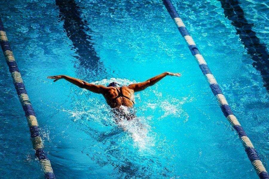 Corsi di nuoto per adulti e bambini forum roma sport center - Piscina trezzano sul naviglio nuoto libero ...